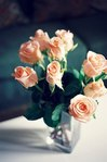 Профиль Spring_primrose
