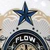flow_team