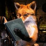 ������� _Violet_fox