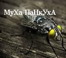 МуХа-ПаНкуХа