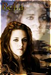 Профиль Cullens