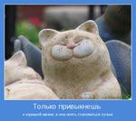 Профиль Cheerful_Tailor