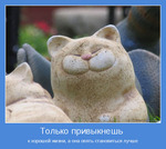 ������� Cheerful_Tailor
