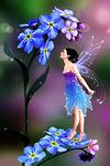 ������� Fairy_Flowers