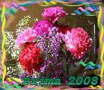 ������� Prima2008