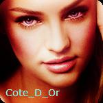 Профиль cote_d_Or