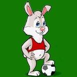 Профиль Белый-Кролик