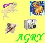 Профиль Agry-dis