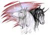 Профиль Spirit_of_Unicorn