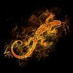 Профиль miss_Salamander