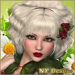 ������� NT_Design
