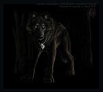 привет всем я чёрный волк пользуючсь бизумием.