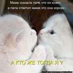 Профиль Kotenok_222