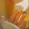 Профиль sabrina_cat