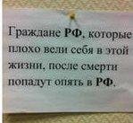 Профиль NetLenko