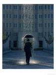 Профиль Человек___дождя