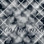 Профиль Cathrinka