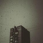 Профиль Blane_In__the_Dark