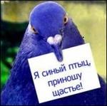 Профиль Птыц_щастья