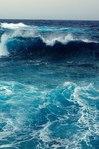 Профиль Ocean_Hunter