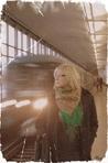 Профиль Dangerous_I_am_blond