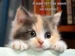 Профиль Люд-Милка