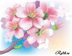 EPS+Jpg превью).  Нежные, свежие краски весны, цветущая яблоня и сакура.  Украсит любой.  Категория.