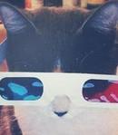 ������� Gimpo-cat