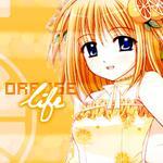 Профиль Rini-cchi