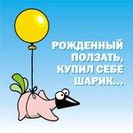 Профиль Ласточка_та_что_летает