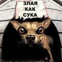 Профиль Неулыбчивая_Крыса
