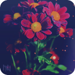 Профиль Mikki_Jay