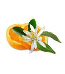 Профиль la_fleur_d_orange