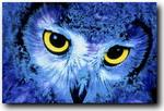 Lazzy_owl