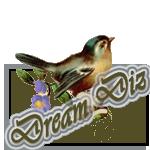 Dream_Diz