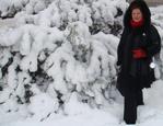 Профиль Svetlana_Maltseva