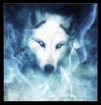 Профиль Белый__Волк