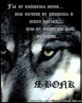 Профиль wolf_was_born_to_be_free