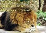 Профиль Георг_Нат_Ник