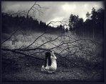 Профиль Вера_в_сказку