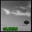 Galinas_Stav