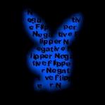 Профиль Negative_Flipper