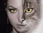 Профиль женщина_кошка2010