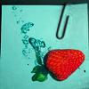 Профиль rainberry
