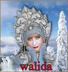 Профиль Walida