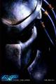 Профиль predator_665