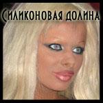 Профиль -СИЛИКОНОВАЯ_ДОЛИНА-