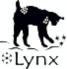 Lynx_Far_Eastern